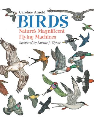 Birds: Nature's Magnificent Flying Machines, Arnold, Caroline