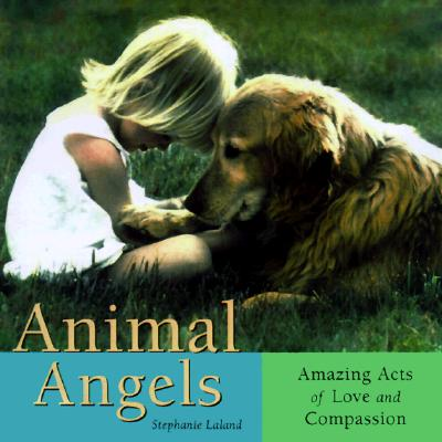 Image for Animal Angels: Amazing Acts of Love Compassion