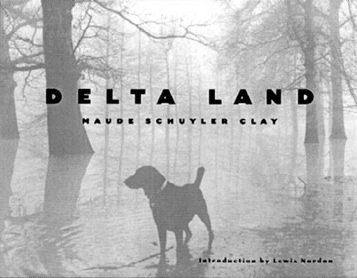 Image for Delta Land (Author and Artist Series)