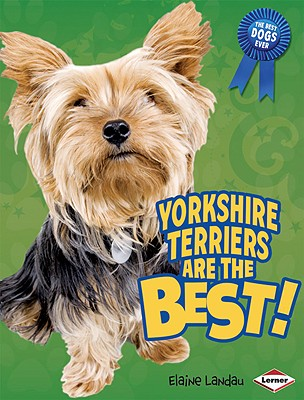Image for YORKSHIRE TERRIERS ARE THE BEST!