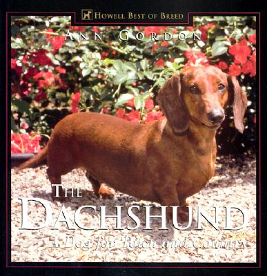 The Dachshund: A Dog for Town and Country, Ann Gordon