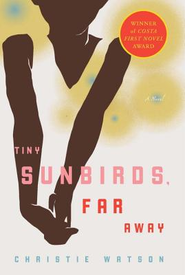 Tiny Sunbirds  Far Away, Christie Watson