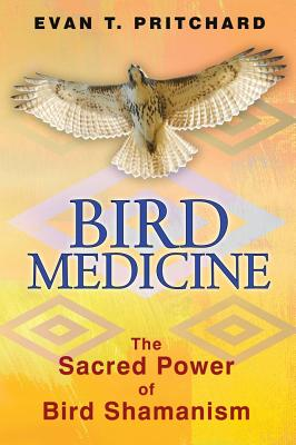 Image for Bird Medicine: The Sacred Power of Bird Shamanism