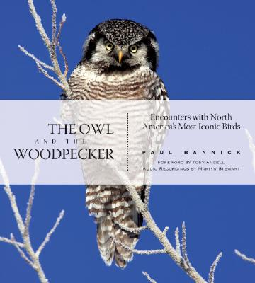 Image for The Owl and the Woodpecker: Encounters With North America's Most Iconic Birds (With Audio CD)