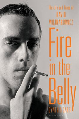 Image for FIRE IN THE BELLY THE LIFE AND TIMES OF DAVID WOJNAROWICZ