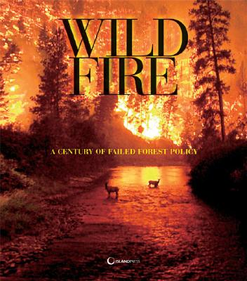 Image for Wildfire: A Century of Failed Forest Policy