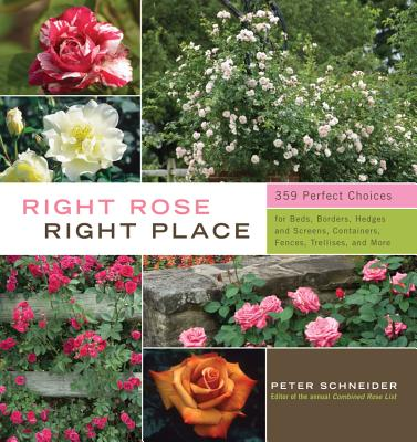Image for Right Rose, Right Place