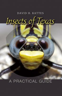 Image for Insects of Texas: A Practical Guide (W. L. Moody Jr. Natural History Series)