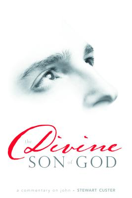 Image for Divine Son of God: A Commentary on John