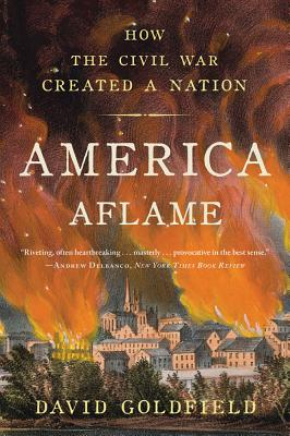 Image for America Aflame: How the Civil War Created a Nation