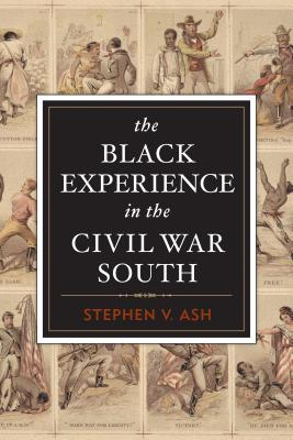 Image for The Black Experience in the Civil War South