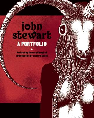 Image for JOHN STEWART: A PORTFOLIO