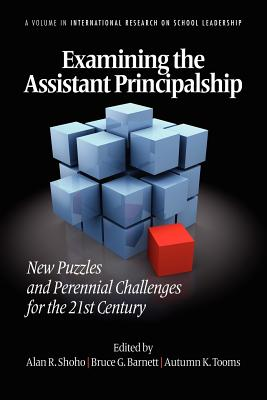Image for EXAMING THE ASSISTANT PRINCIPALSHIP NEW PUZZLES AND PERENNIAL CHALLENGES FOR THE 21ST CENTURY