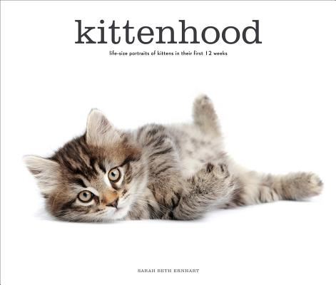 Image for KITTENHOOD LIFE-SIZE PORTRAITS OF KITTENS IN THIER FIRST 12 WEEKS OF LIFE