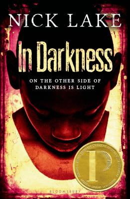 Image for Holt McDougal Library: In Darkness