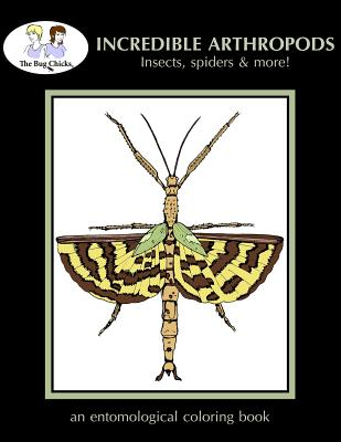 Incredible Arthropods: Insects, spiders & more!, Chicks, The Bug