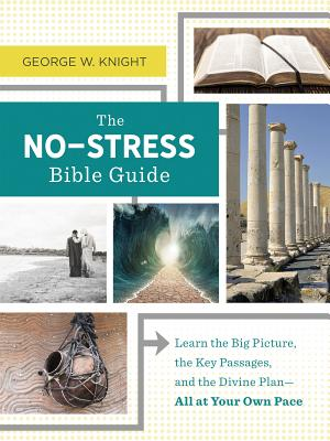 Image for The No-Stress Bible Guide: Learn the Big Picture, the Key Passages, and the Divine Plan―All at Your Own Pace