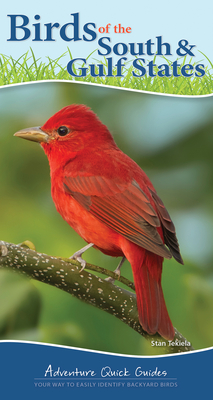 Image for BIRDS OF THE SOUTH: YOUR WAY TO EASILY IDENTIFY BACKYARD BIRDS