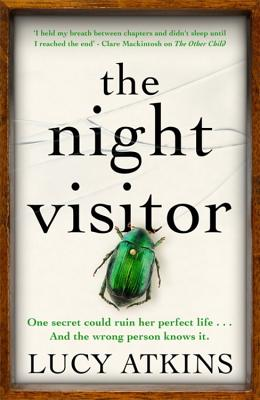 Image for Night Visitor