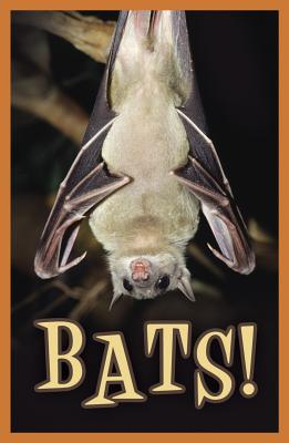 Image for Bats! (Pack of 25) (Proclaiming the Gospel)