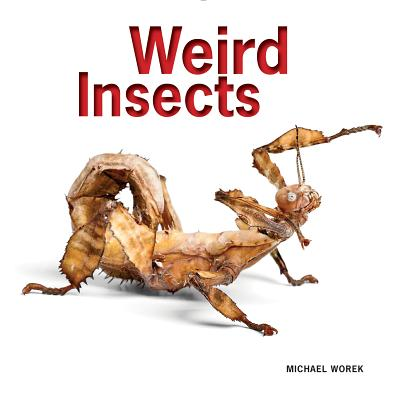 Image for Weird Insects