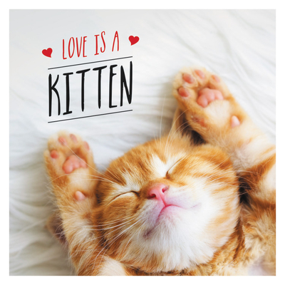Image for LOVE IS A KITTEN