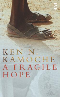 Image for A Fragile Hope (Salt Modern Fiction S)
