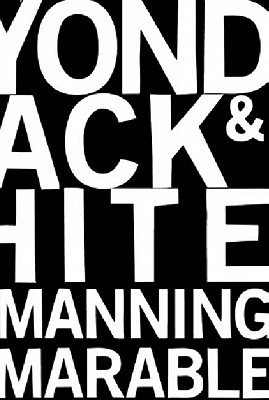 Image for Beyond Black and White: Transforming African-American Politics
