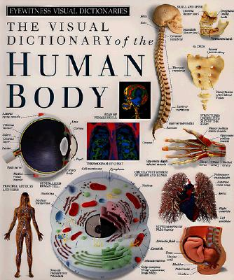 Image for Eyewitness Visual Dictionaries: The Visual Dictionary of the Human Body (DK Visual Dictionaries)