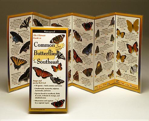 Common Butterflies of the Southeast (Foldingguides), Cech, Rick