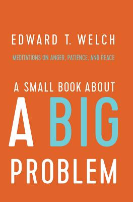Image for A Small Book about a Big Problem: Meditations on Anger, Patience, and Peace